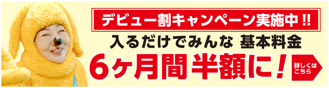エネワンでんきデビュー割キャンペーン:基本料金6ヶ月間半額