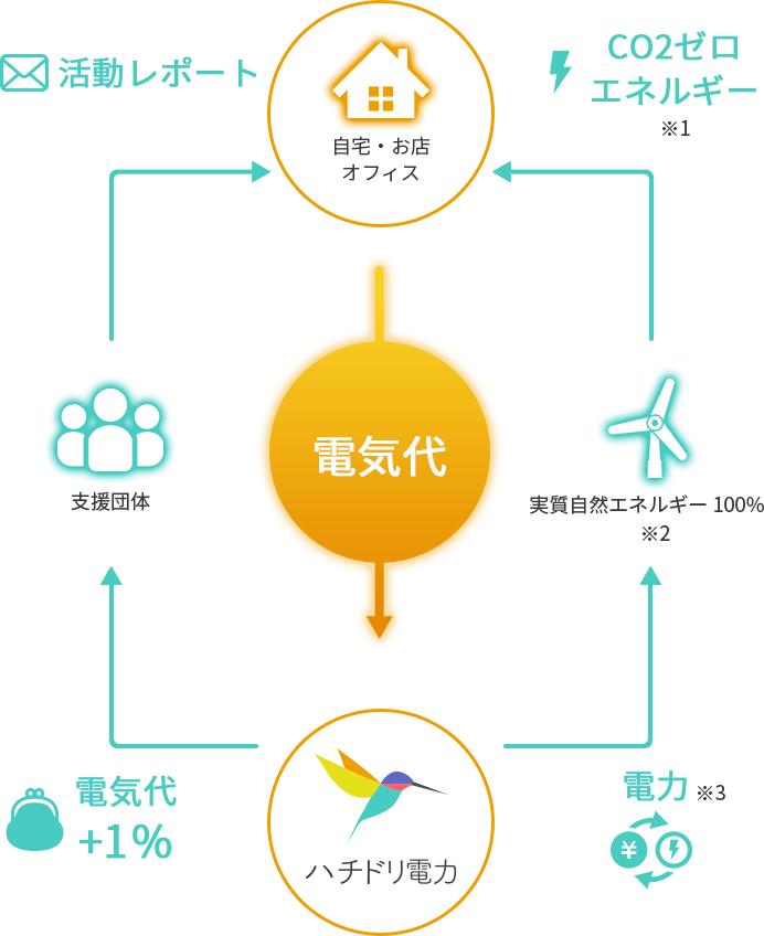 【ハチドリ電力の仕組み】人にも地球にも優しい電気