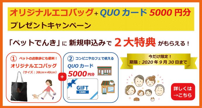オリジナルエコバッグ+QUOカード5,000円分プレゼントキャンペーン(2020年9月30日まで)