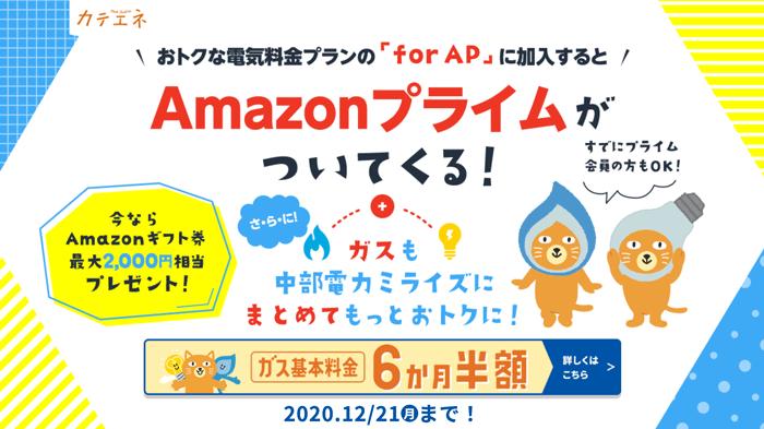 カテエネ 新しい電気料金「for AP」プラン加入キャンペーン実施中!!(2020年12月21日(月)まで)