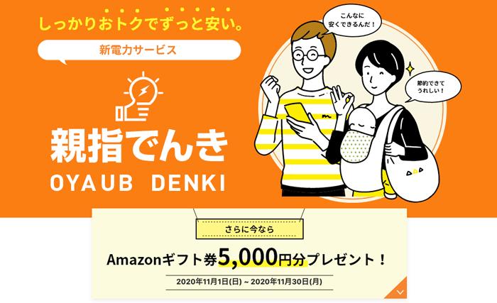 Amazonギフト券5,000円分プレゼント!(2020年11月30日(月)まで)