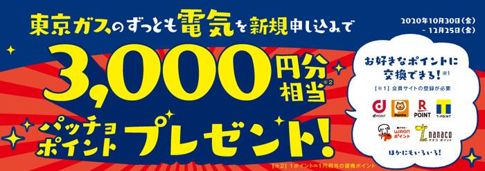 東京ガスのずっとも電気を新規申し込みでお好きなポイントに交換できる3,000円分相当パッチョポイントプレゼント!(2020年12月25日(金)まで)